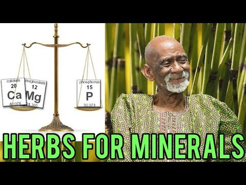 Dr Sebi - Herbs For Magnesium, Phosphorus And Calcium