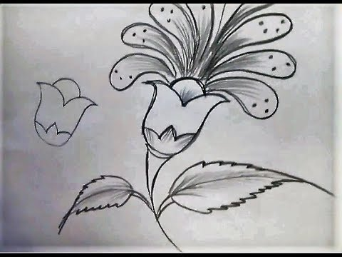 Freehand Drawing Flower Youtube