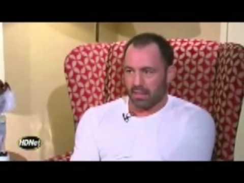 Joe Rogan - Admits and Speaks On MMA vs (TMA)Traditional Martial Arts Ego
