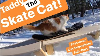 Taddy Skates 2020 Best Cat Snowskate Video Ever! 'Hustle To Meowtivate'