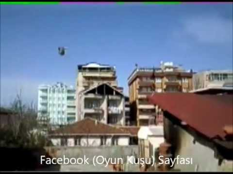 (Oyun Kusu) THE TURKISH FAMOUS CRAKTUMBLER PIGEONS (1)