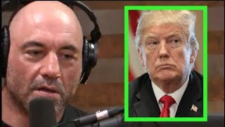 Joe Rogan - You Shouldn't Hate Trump