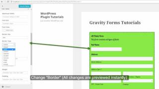 Easiest Way to Add Border of Text Field within Gravity Forms
