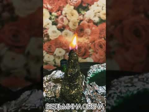Вопрос: Какие отзывы на статью Пламя ночной свечи?