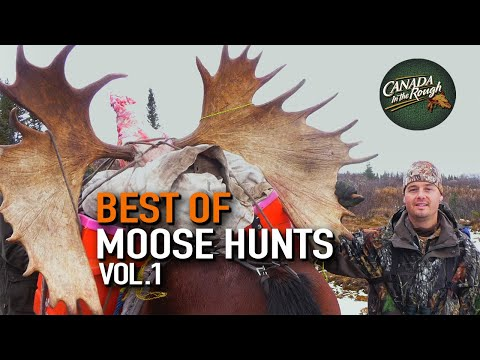 Best Of Moose Hunts Vol.1 | Canada in the Rough