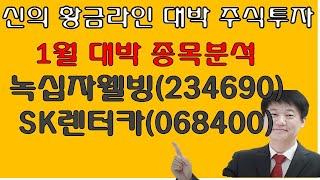 주식투자 녹십자웰빙(234690),SK렌터카(06840…