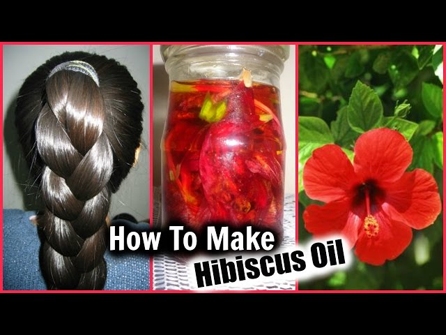 Hibiscus Oil Enhances And Protects Hair Growth And Quality