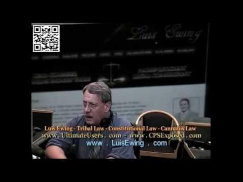 Luis Ewing, Washington State Constitutional Fraud, WillPWils 2