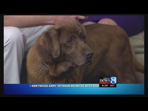 Kentwood veteran and his military dog on Daybreak