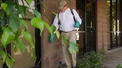 Mesa Pest Control - Responsible Pest Control Mesa Az