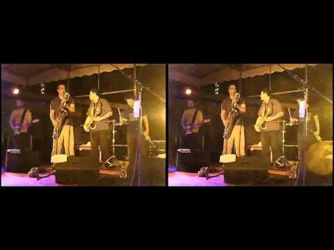 3D Live Music - Afrodizz @ Grand Parc Bordeaux (08/07/2010) Extrait 05