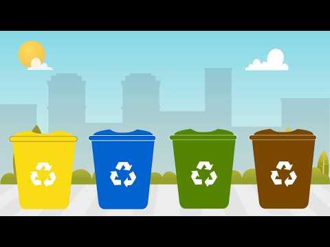 ¿Cómo reciclar? - Guía completa de reciclaje - Algohayquehacer