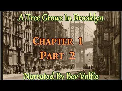 A Tree Grows In Brooklyn Ch1 Prt 2