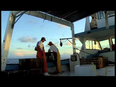Marine Debriswaterways272 A Your Sanctuary TV Presentation