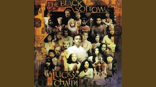 Watch Black Sorrows Lucky Charm video