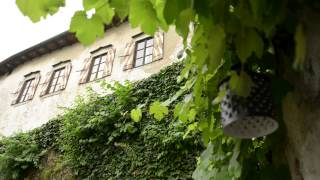 Свадьба за границей. Свадьба в Словении Анастасии и Максима.