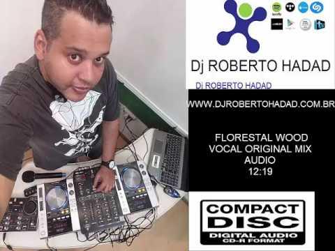 MIX DJ ROBERTO HADAD