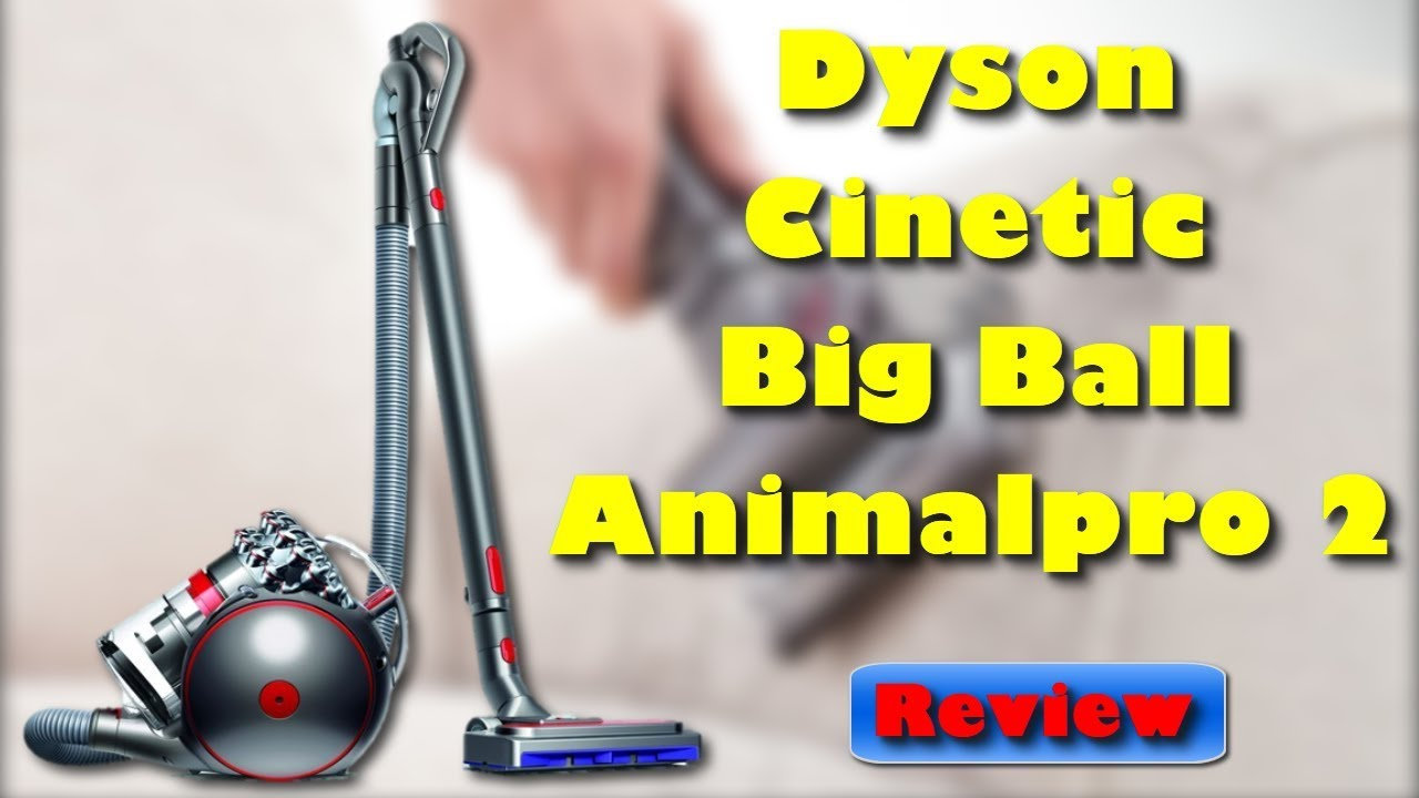 dyson cinetic big ball animalpro 2 beutelloser staubsauger. Black Bedroom Furniture Sets. Home Design Ideas