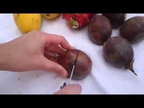 Как едят маракую -
