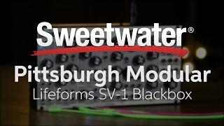 pittsburgh modular lifeforms sv 1 blackbox semi modular analog synthesizer demo