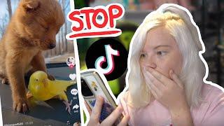STOP DOING THIS! Terrible Viral Pet TikToks