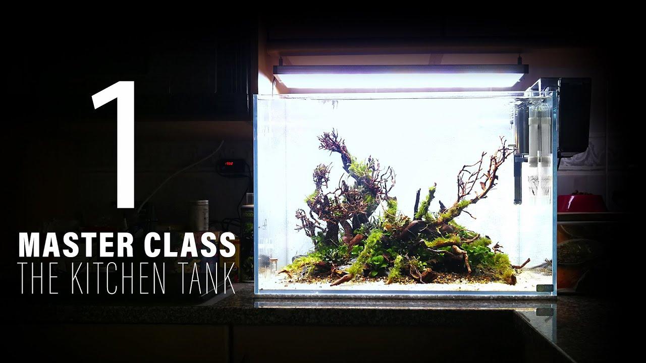 MASTER CLASS 1 - THE KITCHEN TANK