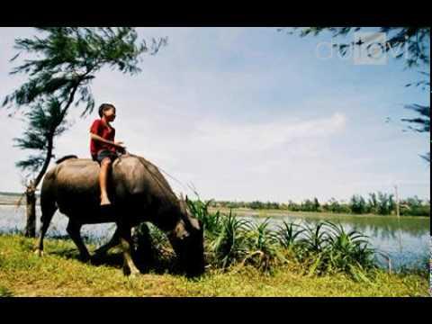Tiếng gọi mùa xuân - Nhạc rừng tây nguyên - Đinh Thìn