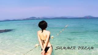 渚のオールスターズ - SUMMER DREAM