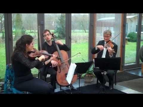 Air; Bach, Canon; Pachelbel. Trio