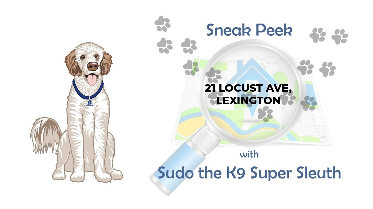 Sneak Peek with Sudo the K9 Super Sleuth - 21 Locust Ave, Lexington