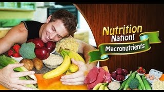 Nutrition Nation! Macronutrients