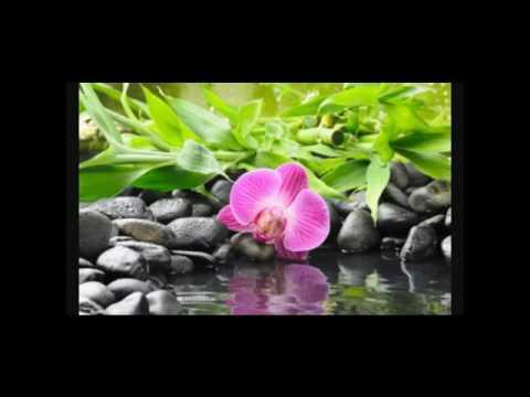 Fond d 39 cran zen youtube for Photo ecran zen