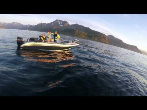 Norwegen Loppa Havfiske 2016