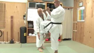Kicks In Okinawan Karate