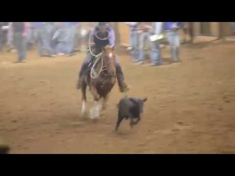 South Plains College competes at the 2016 Texas Tech Rodeo