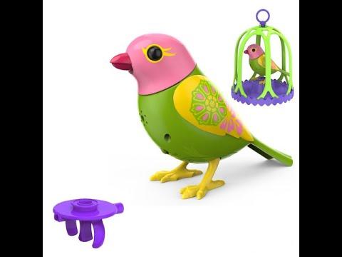 Тогда порадуйте своего малыша замечательной интерактивной игрушкой – поющей птичкой digibirds, которая подарит ребенку много часов радостной.