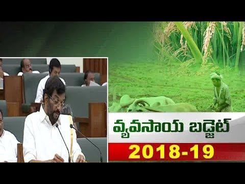 AP Agri Budget 2018-19 | Agriculture Minister Somireddy Chandramohan Reddy Speech