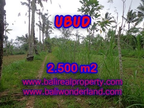 Land for sale in Bali, spectacular view in Ubud Tegalalang Bali -- TJUB325