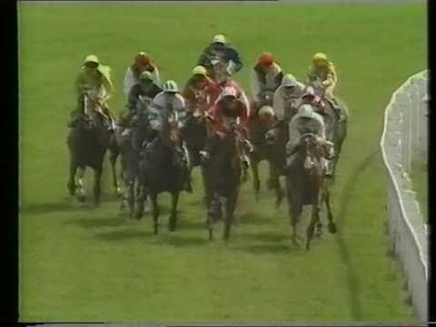 1982 Oaks Stakes