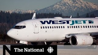 WestJet employees say company is breaking labour laws