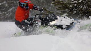 Arctic Cat Riot 2020 - 2021