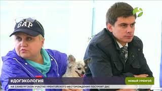 ДогЭкология. Новоуренгойцы обсудили правила выгула и содержания домашних животных
