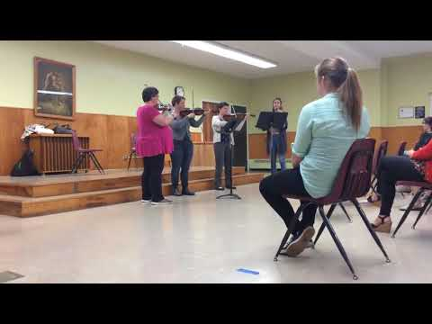 Adult Summer Music - Violin Students
