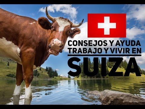 Suiza: permisos, vivienda y trabajo | Consejos y ayuda (Parte 2)