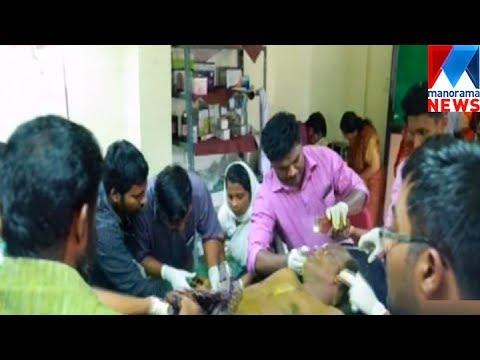 Kayamkulam - Hornet Attack    Manorama News