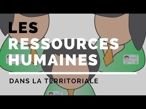 Les ressources humaines dans la fonction publique territoriale