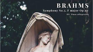 Brahms - Symphony No.3, F major Op.90 - III. Poco allegretto