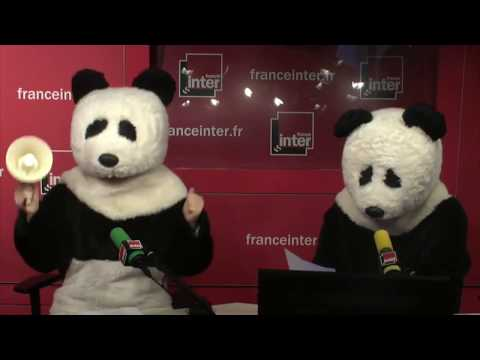Pandas, seins, boys bands et crampon... Le best of humour de France Inter du 13 octobre