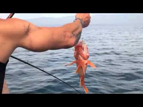 Project Healing Waters - Big Mikes Fishing Charters & Channel Islands Sportfishing