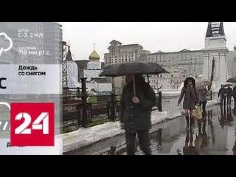 Погода в Москве резко ухудшилась - Россия 24